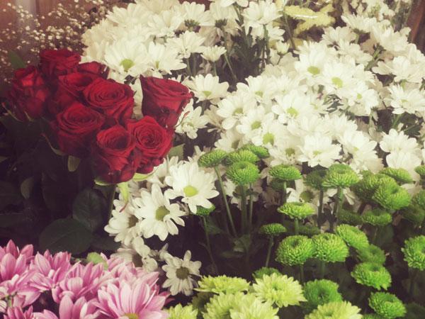 flor-fresca-para-ramos-de-flores